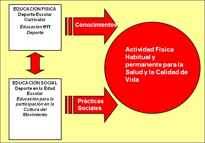 Evaluaci n de la actividad f sica efidex for Practica de oficina concepto